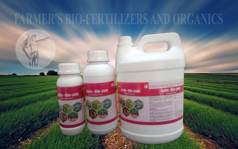 Azoto-bio-com: Azotobacter