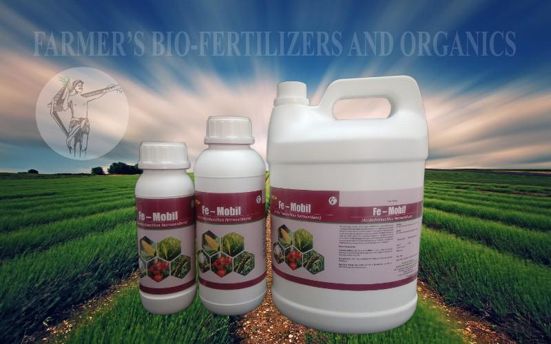 Fe – mobil: Acidothiobacillus ferrooxidans